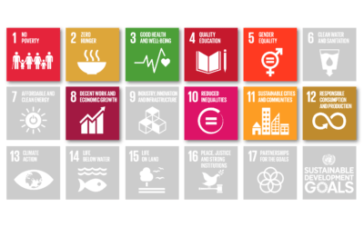 Implementare i 9 obiettivi di sviluppo sostenibile dell'ONU con SOCI